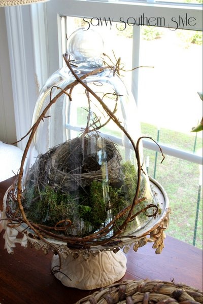 Nest and moss cloche by Savvy Southern Style featured on Funky Junk Interiors