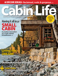 Funky Junk in Cabin Life Oct 2014