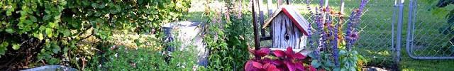 edge_flowerbeds_like_a_pro