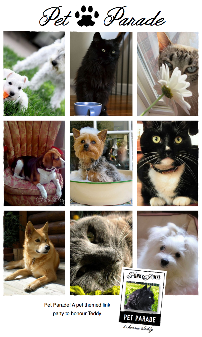 Pet Parade, a pet themed link party to honour Teddy, via Funky Junk Interiors
