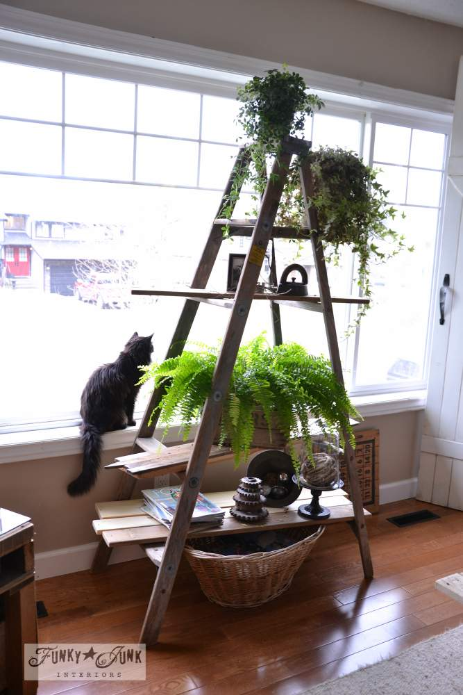 Ladder plant stand with reclaimed wood shelves, via Funky Junk Interiors, part of a whole home JUNK tour!