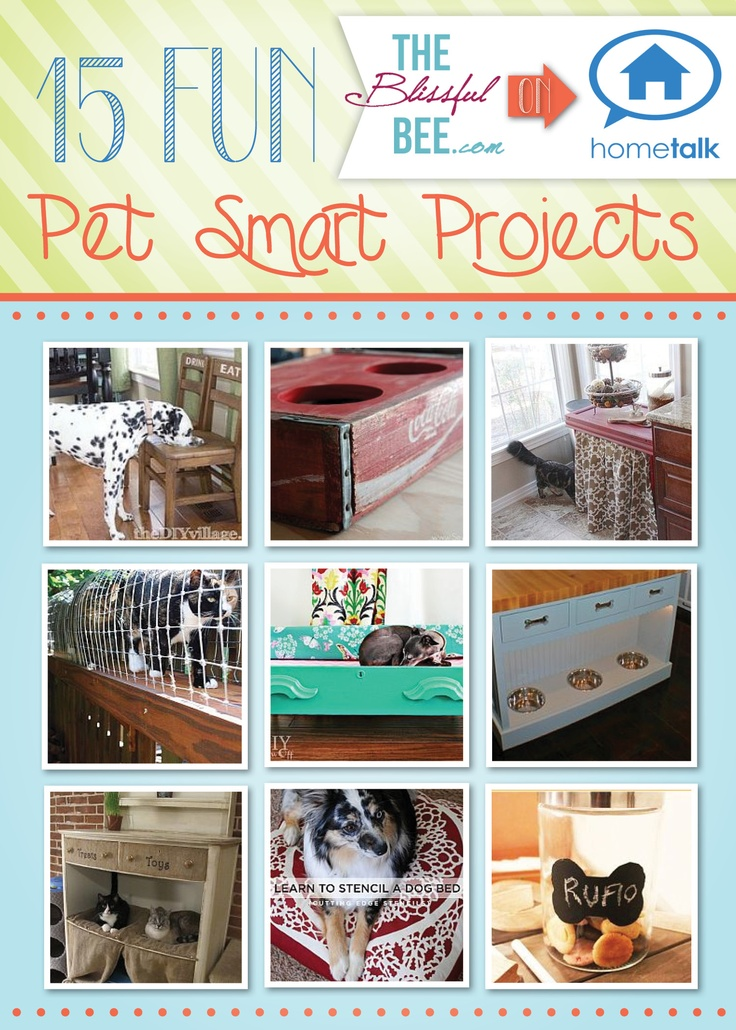 Pet Smart Projects, curated by The Blissful Bee, from Hometalk
