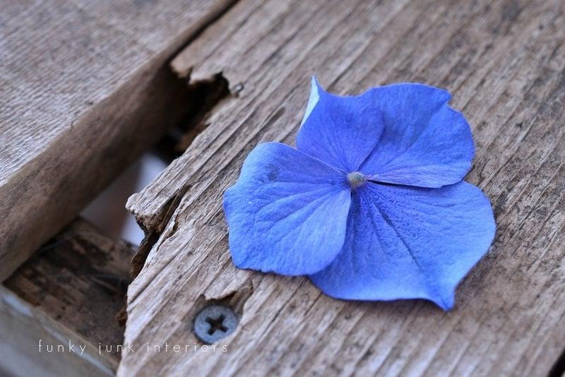 flowers in creative junk vases funky junk interiors - blue hydrangea petal