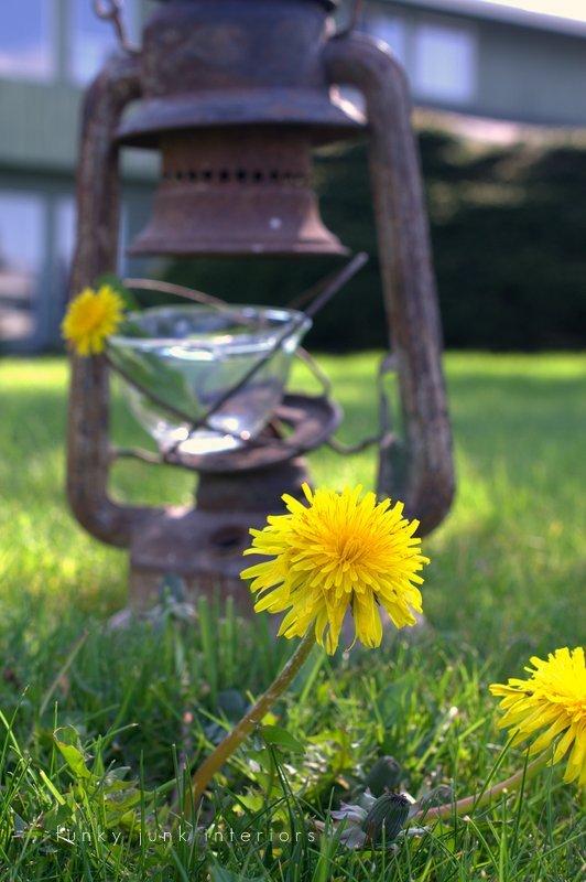 lowers in creative junk vases funky junk interiors - dandelions in rusty lantern