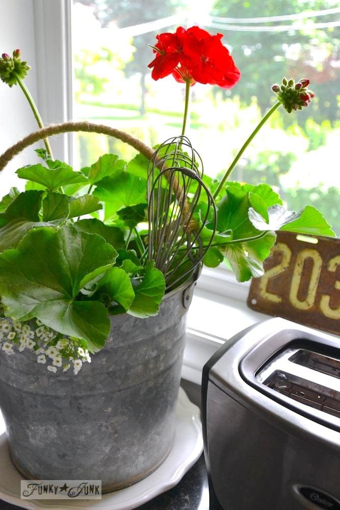 Galvanized bucket of flowers, red geranium, in kitchen via Funky Junk Interiors