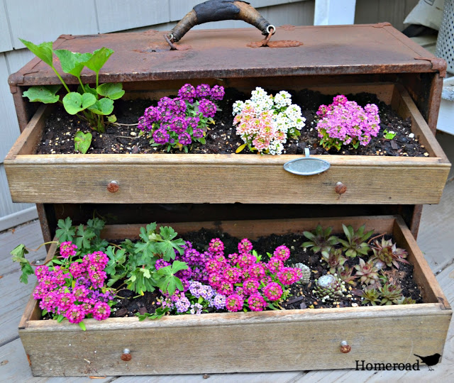 Vintage toolbox garden, by Homeroad, featured on Funky Junk Interiors
