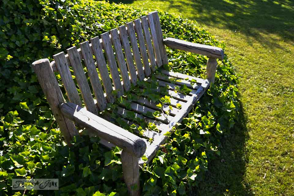 The ivy covered garden bench - a cheat for lawn mowing via Funky Junk Interiors