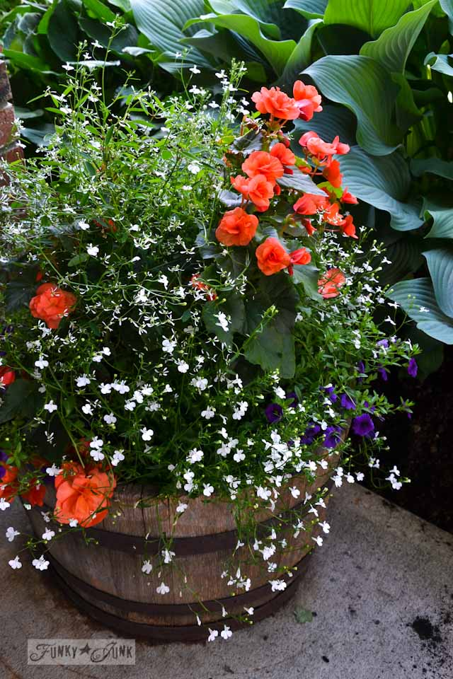 Barrel planter with hanging basket via FunkyJunkInteriors.net