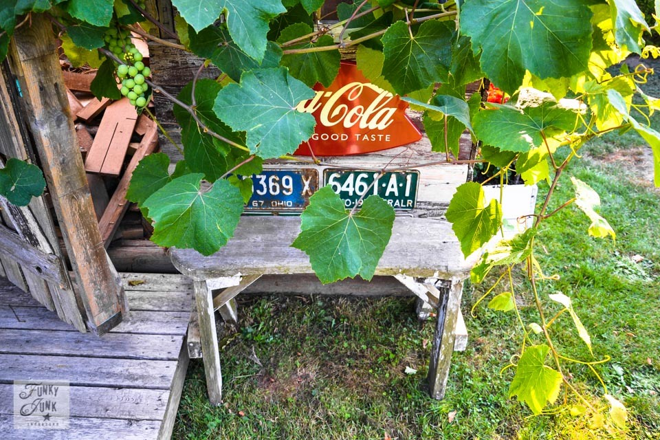 Rustic garden shed via Funky Junk Interiors - grapevines, old signs and bench