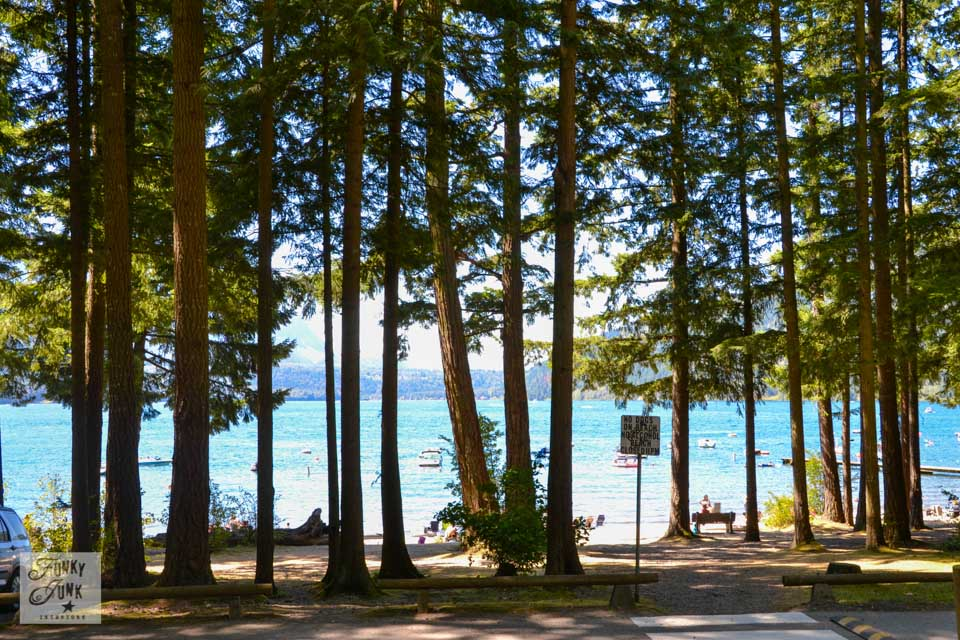 If I lived near Cultus Lake - a forest silhouettes against the sunlight at the beach