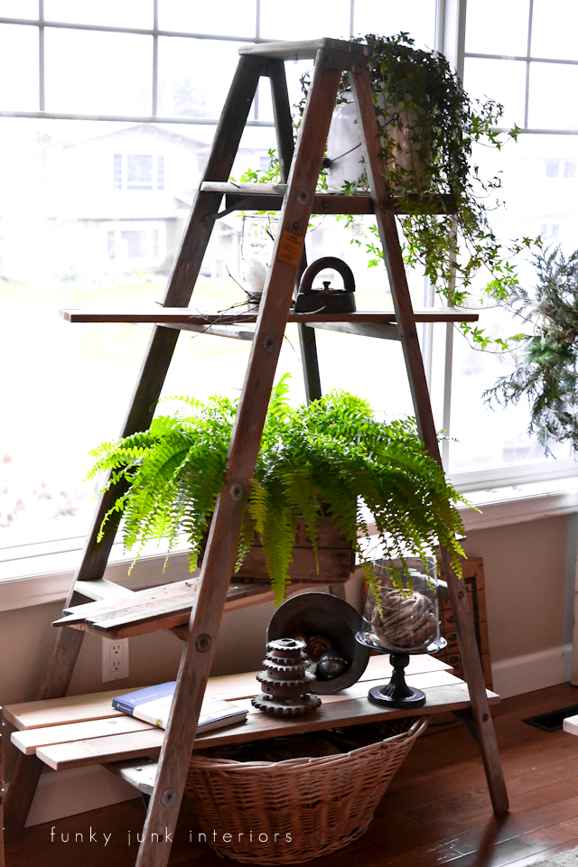 Ladder plant stand with reclaimed shelves via Funky Junk Interiors