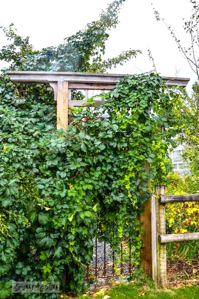 Rustic wood arbour with vines  / Reclaimed garden features at a Hope garden centre via http://www.funkyjunkinteriors.net/