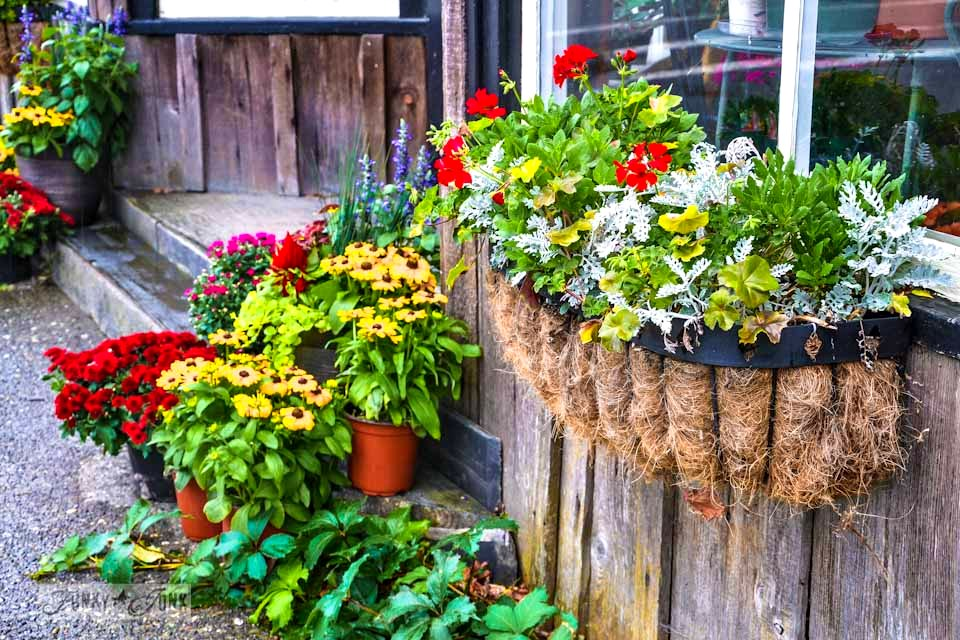 Layers of potted flowers and rustic window box / Reclaimed garden features at a Hope garden centre via https://www.funkyjunkinteriors.net/