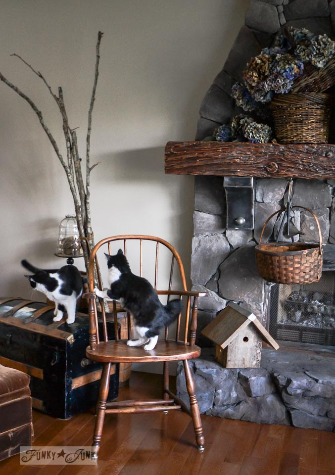 Decorating tuxedo cats mayhem - via Funky Junk Interiors