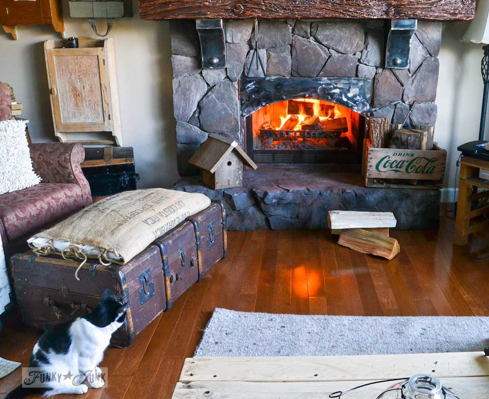 Cat's first sighting of a fire, part of The first cozy fireplace fire of the season via https://www.funkyjunkinteriors.net/