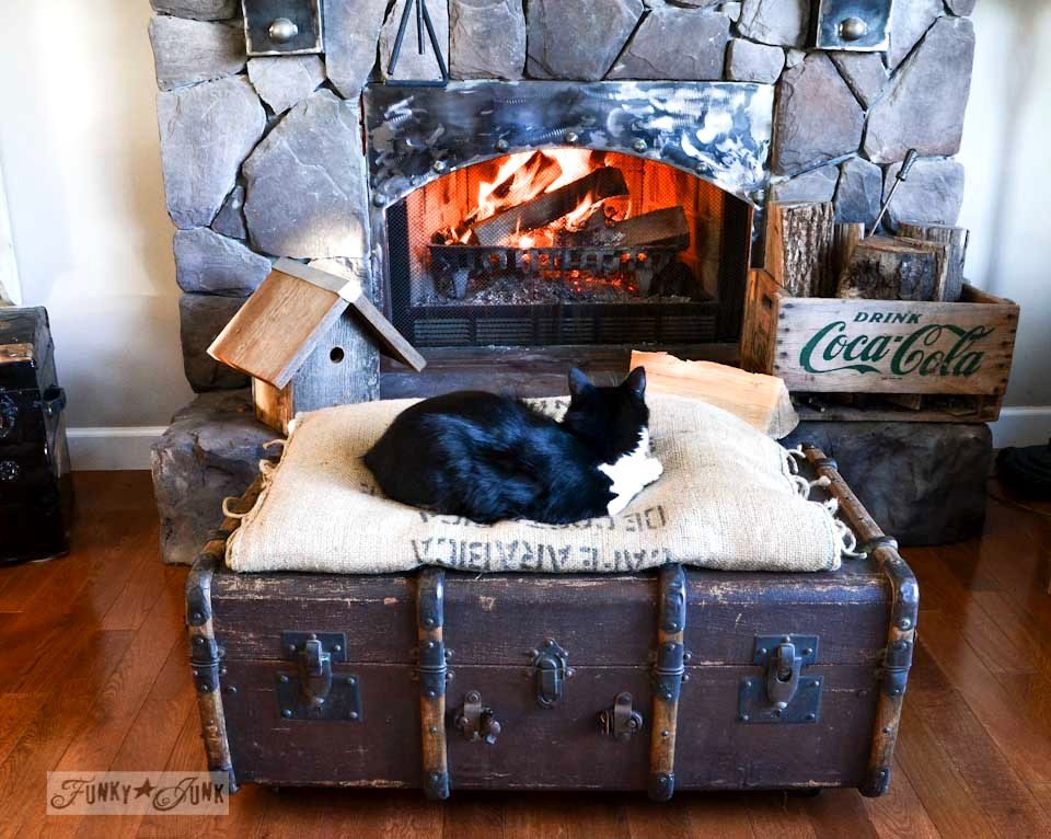 Tuxedo cat Skye on a trunk ottoman / part of The first cozy fireplace fire of the season via https://www.funkyjunkinteriors.net/