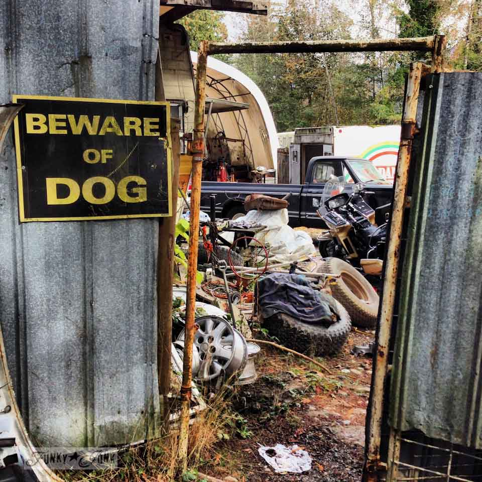 Extreme junkin' shopping trip. Watch your step! via https://www.funkyjunkinteriors.net/