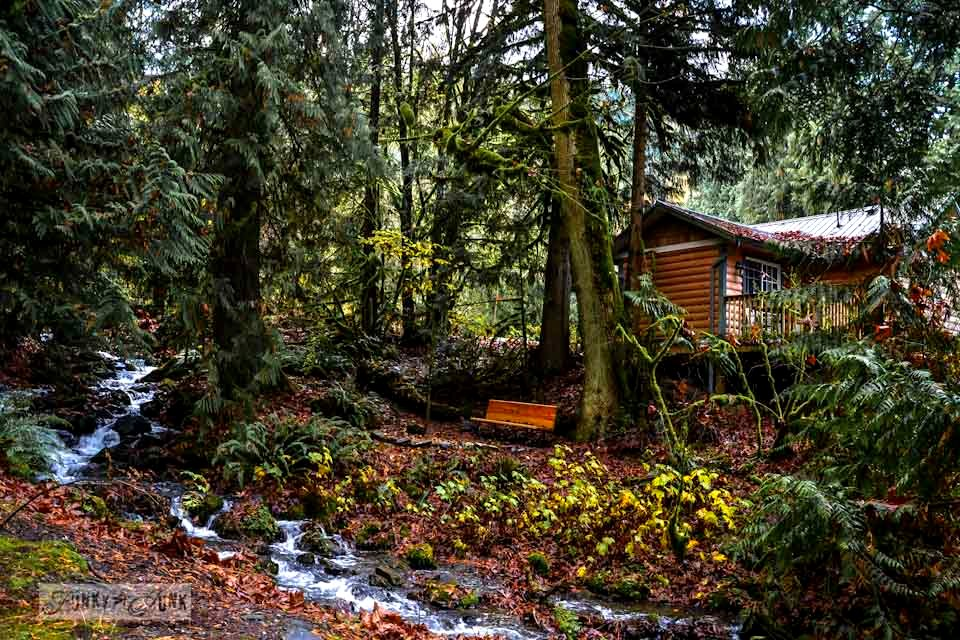 Unplugging and retreating at Charis Camp - fall photography and an experience via http://www.funkyjunkinteriors.net/