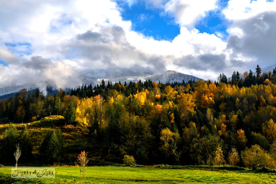 Snow capped mountains and fall colours / Unplugging and retreating at Charis Camp - fall photography and an experience via https://www.funkyjunkinteriors.net/