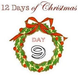 12 Days of Christmas 2013 via Funky Junk Interiors-009