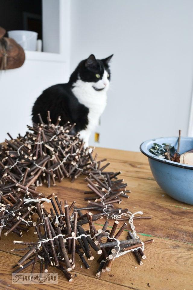 Tuxedo cat photobomb and twig garland / When cats photobomb via FunkyJunkInteriors.net