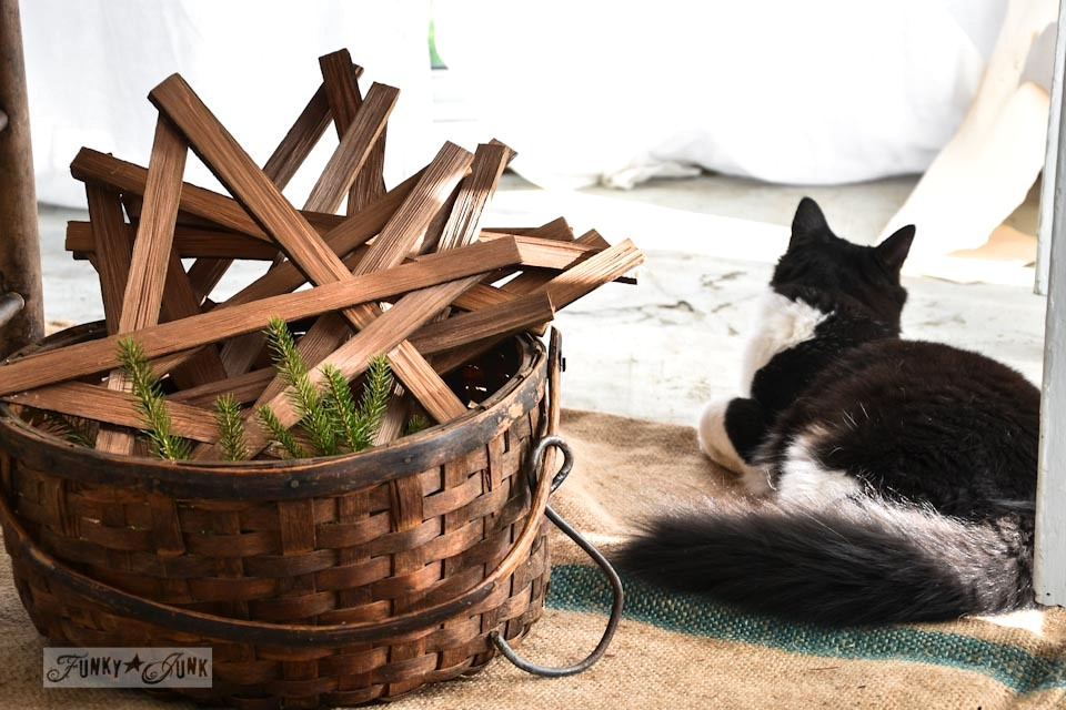 Rustic kindling stars and tuxedo cat / When cats photobomb via FunkyJunkInteriors.net