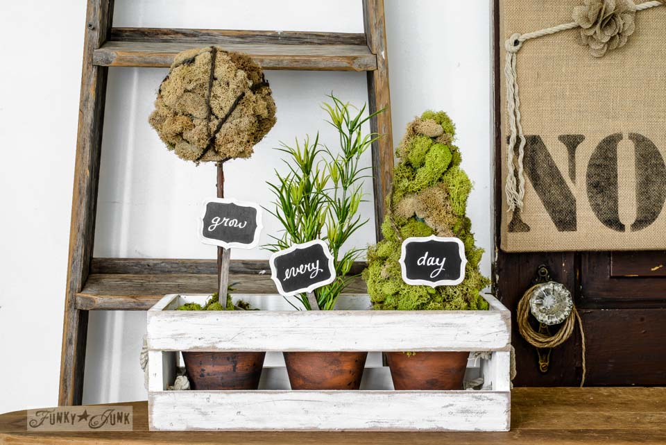 Moss topiaries in a crate by Funky Junk Interiors