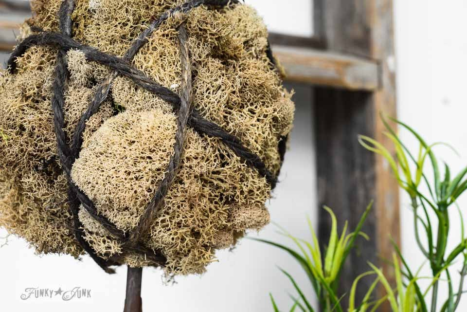 How to make a ball shaped moss topiary with twine / How to make inspiring moss topiaries in a crate via FunkyJunkInteirors.net