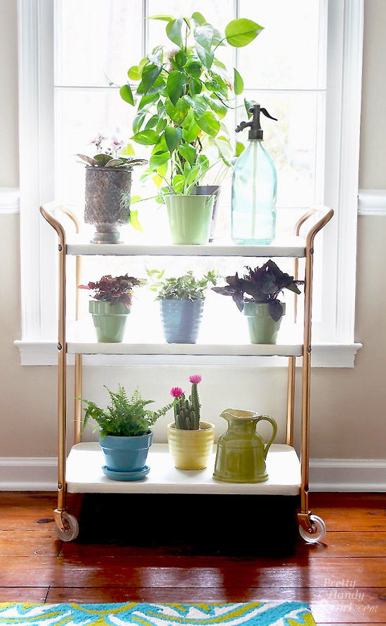 Plant-cart-in-window