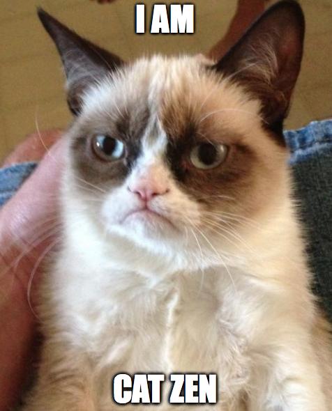 Grumpy Cat I AM CAT ZEN via FunkyJunkInteriors.net