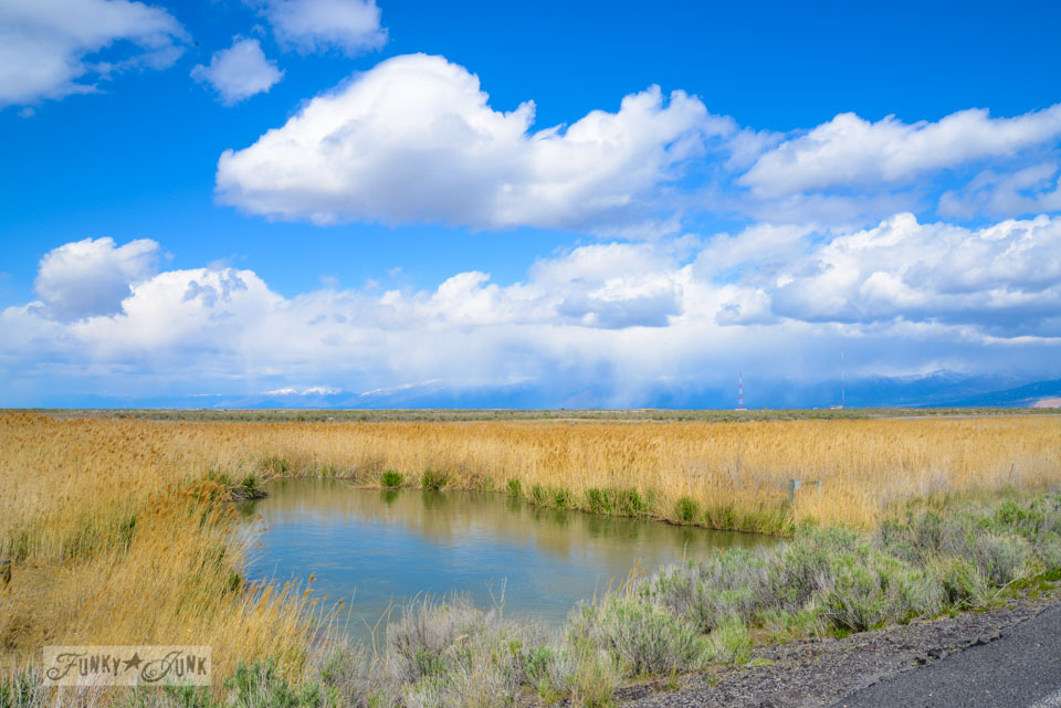 Near Great Salt Lake, Utah / Braving the rental car in Salt Lake City, Utah via FunkyJunkInteriors.net