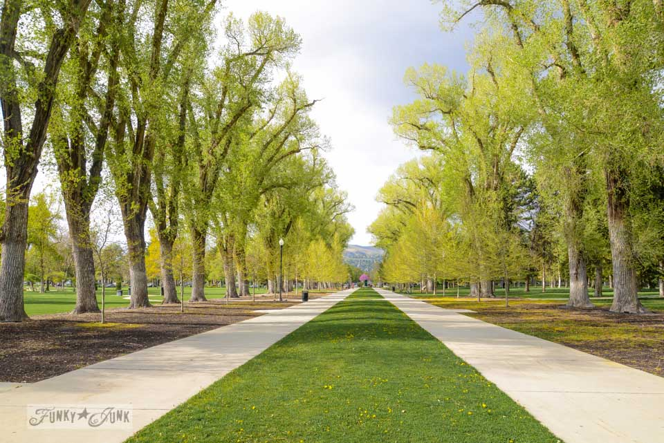 Liberty Park / One gorgeous photo tour of Salt Lake City, Utah, on FunkyJunkInteriors.net