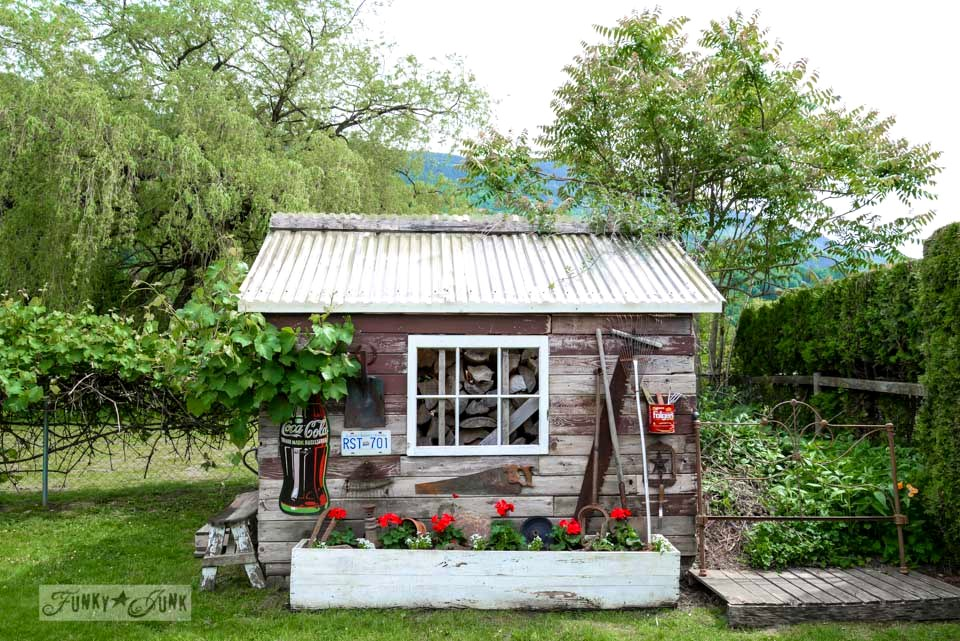 Red Geraniums In An Old Crate / Rustic Garden Shed With Old Signs, Tools And