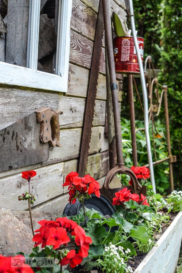 Rusty old tools in a flower bed of red geraniums with a rustic garden shed / funkyjunkinteriors.net