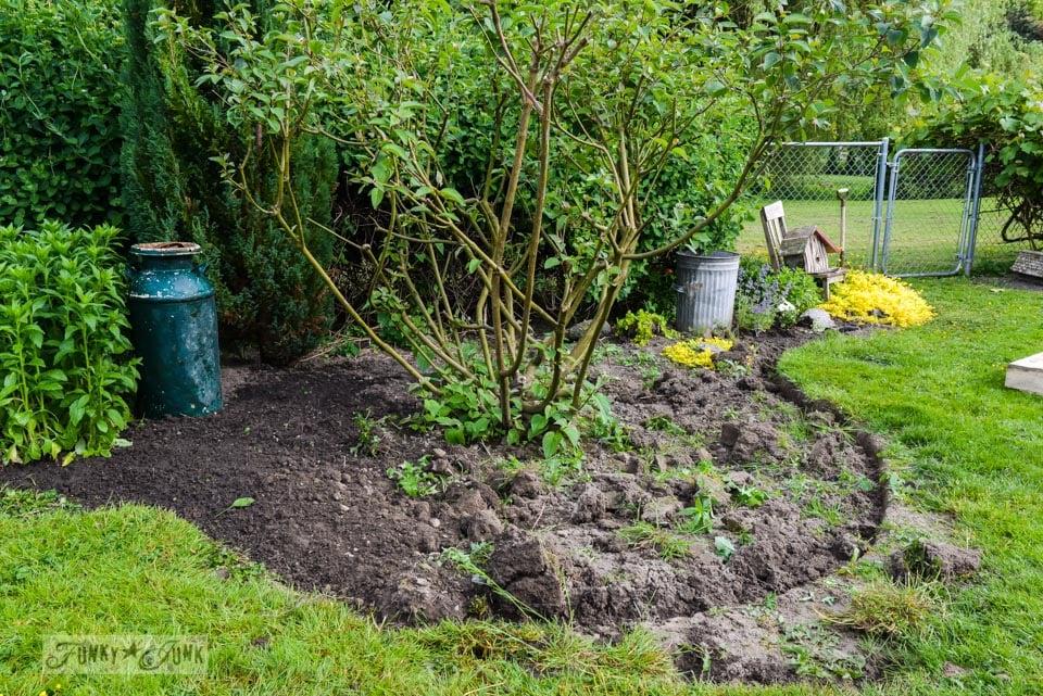 flowerbeds before