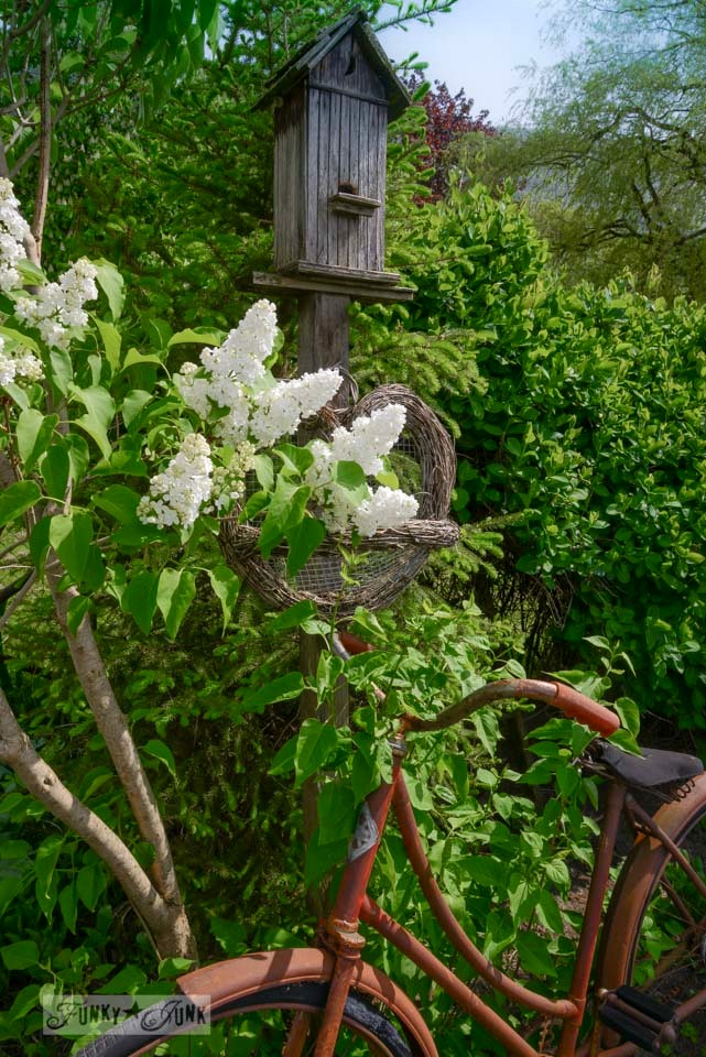 Lilac tree and old rusty bike in a garden via FunkyJunkInteriors.net