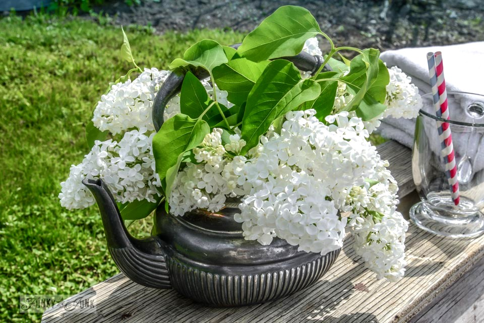 Old kettle filled with white lilacs in back yard via FunkyJunkInteriors.net