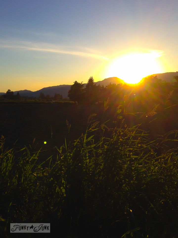 Sunset on a country road / part of Saved by a babbling brook (inspiration) on FunkyJunkInteriors.net