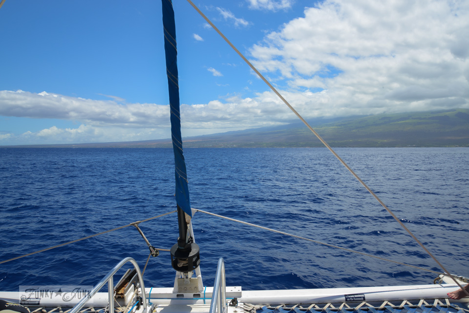 The best way to snorkel and snuba while on Molokini - our own tips with lots of pretty pictures via FunkyJunkInteriors.net