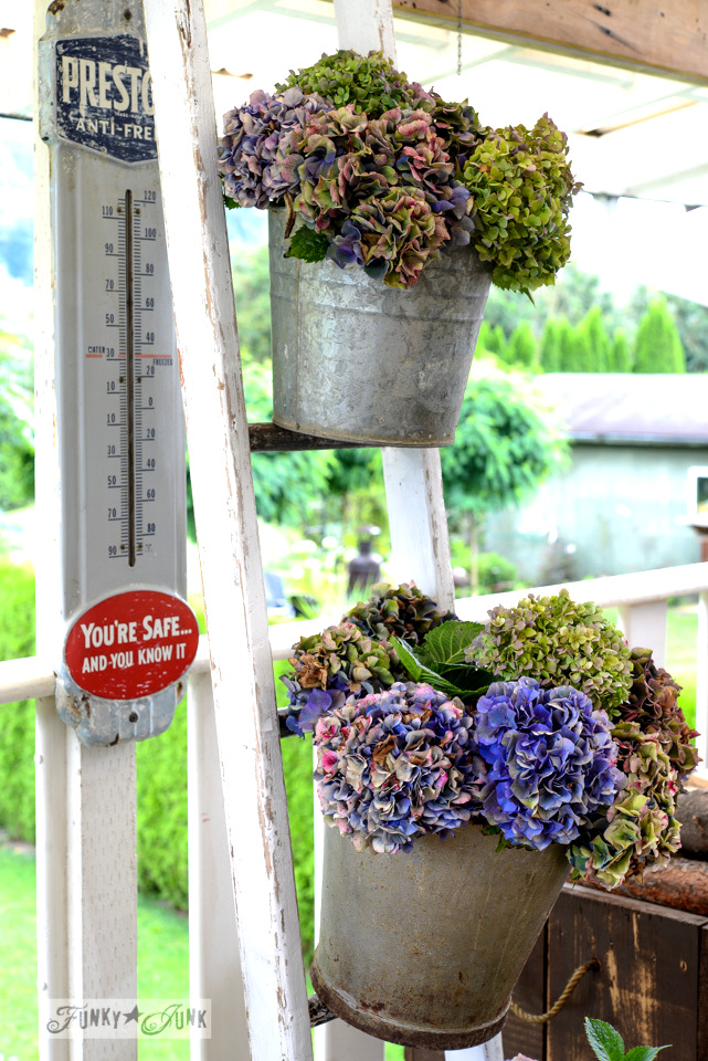 Forever beautiful buckets of hydrangeas on a ladder and how to dry  /  via FunkyJunkInteriors.net