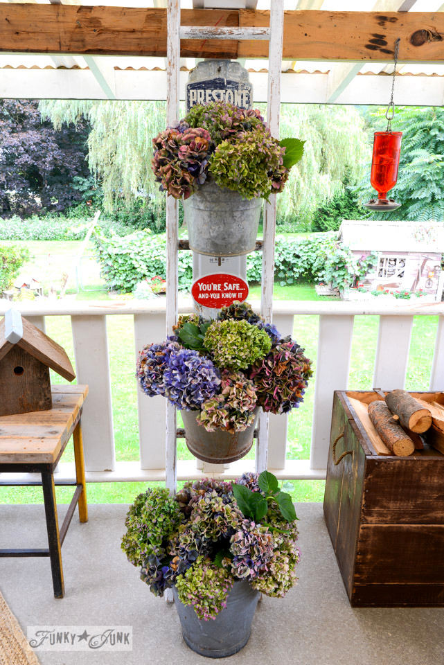 Forever beautiful buckets of hydrangeas on a ladder / how to dry them and keep them around all year long via FunkyJunkInteriors.net