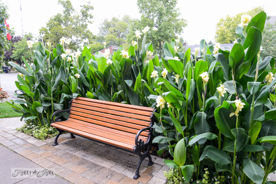 Bench surrounded with flowers at Niagara on the Lake / A bird's eye view of magnificent Niagara Falls on FunkyJunkInteriors.net