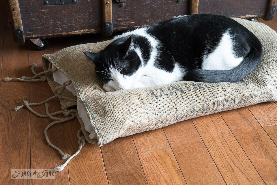 Sleeping tuxedo cat on a burlap pillow in front of a fireplace / FunkyJunkInteriors.net