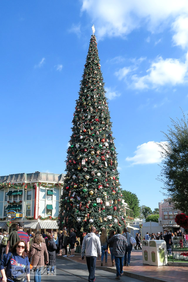 Christmas tree during the daytime at Disneyland   / FunkyJunkInteriors.net