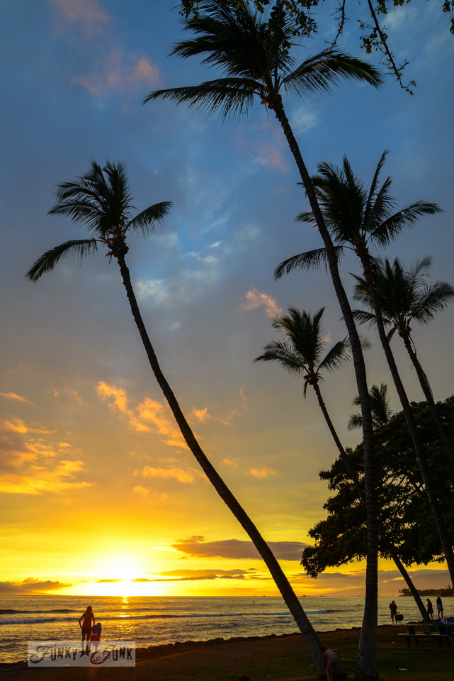 Vibrant Maui sunset with black palm tree silouettes / funkyjunkinteriors.net