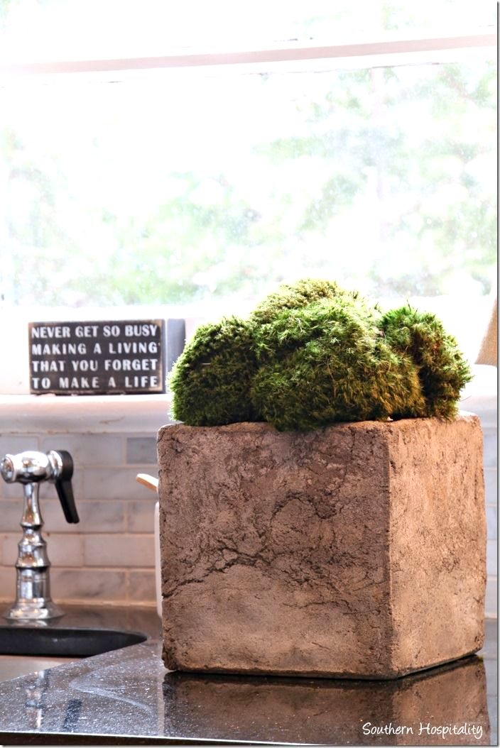 Moss in a square clay pot, from Southern Hospitality, on Funky Junk Interiors