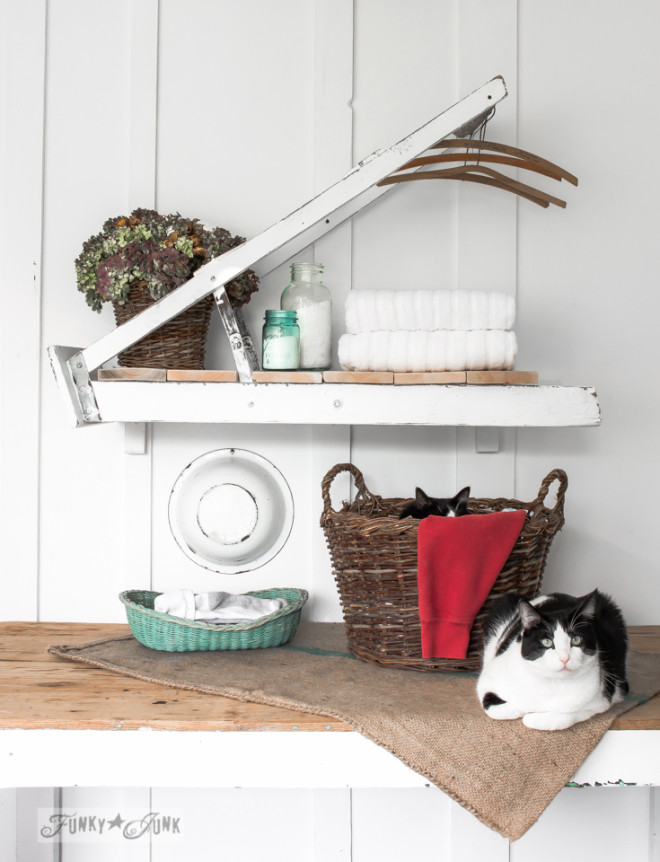 Two tuxedo cats with a ladder laundry room shelf- part of Valuable Cat Tips You May Not Know and their fav gear