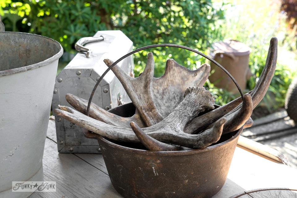 Antlers in a metal pot / Flea market and garage sale finds / FunkyJunkInteriors.net