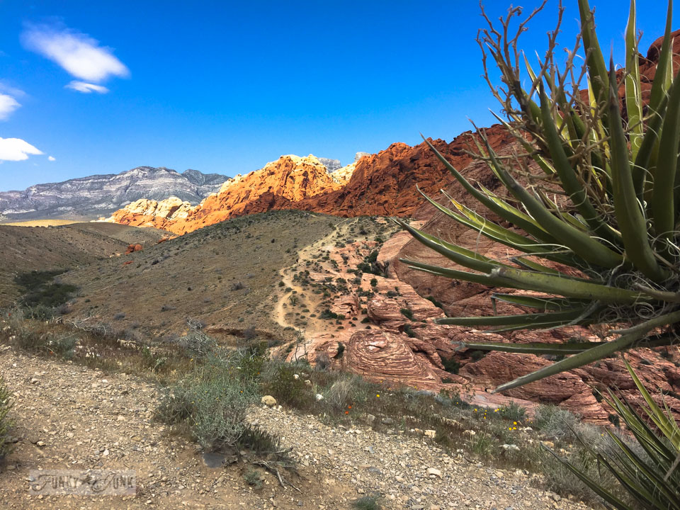 Visiting the stunning Red Rock Canyon while in Vegas / FunkyJunkInteriors.net