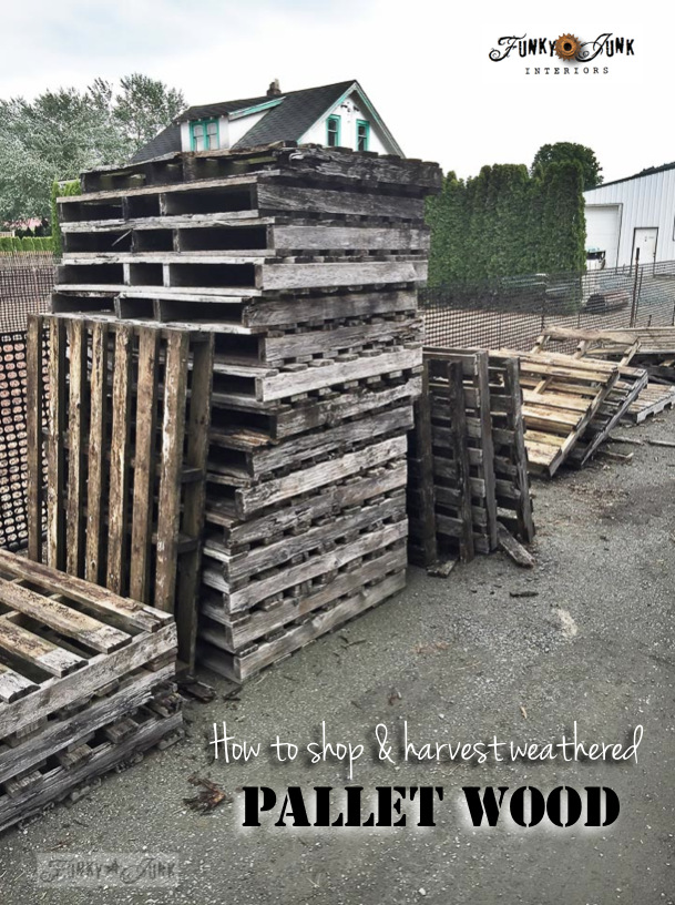 How to shop and harvest weathered pallet wood by Funky Junk Interiors.27 PM